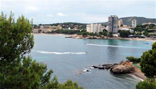 image for Lessons from the Legionnaires' disease outbreak in Mallorca