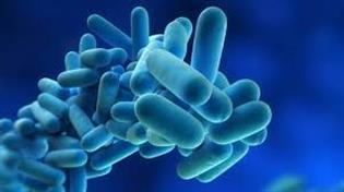 image for Anti-Legionella measures
